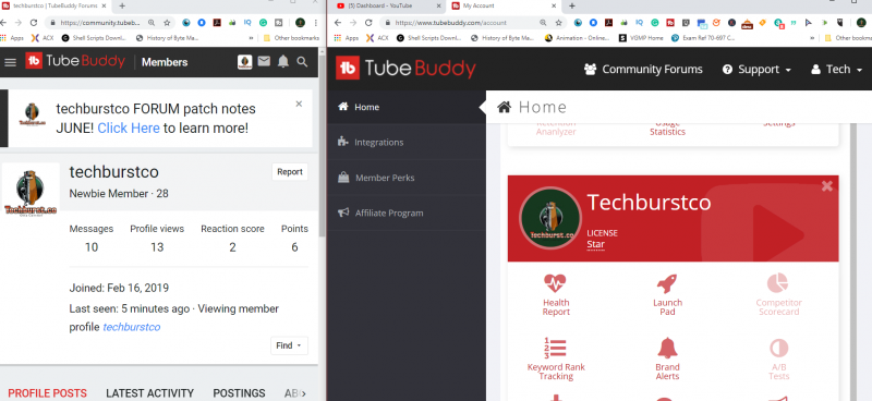 Tubebuddy verify for badge.png